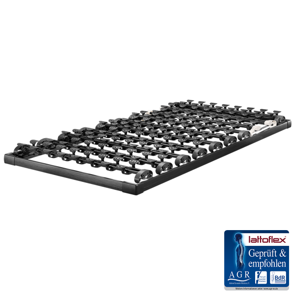 Lattoflex Lattenrost MiS Rahmen Thevo 900
